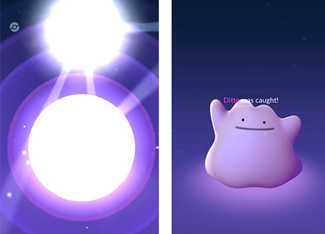 Pokemon Go : Métamorph se cache en 2G !