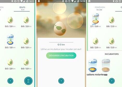 Les oeufs dans Pokémon Go