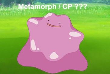 Metamorph confirmé ? Niantic botte en touche !