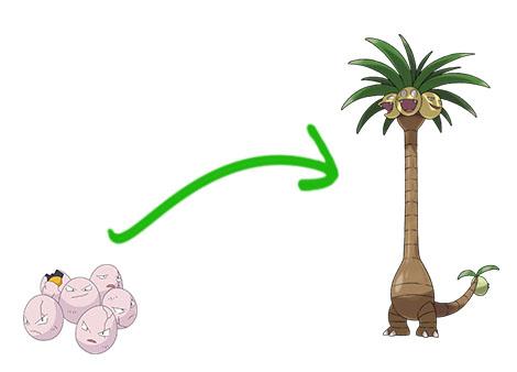 Le secret des évolutions des Pokemon d'Alola