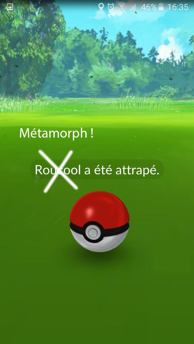 metamorph_illu
