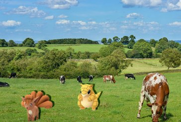 Pokemon Go : Des Pokemon à la campagne